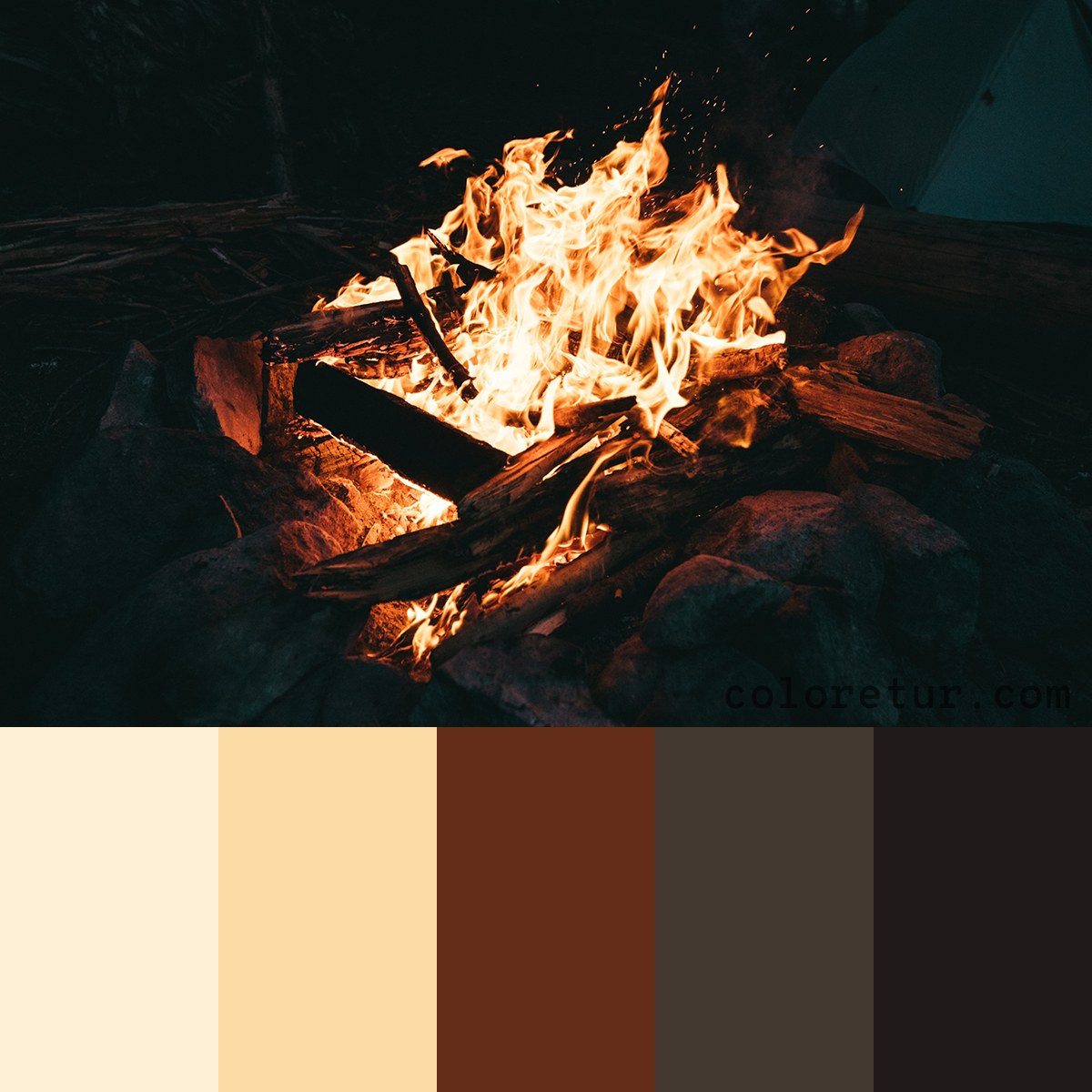Camp Fire Color Palette Swatches