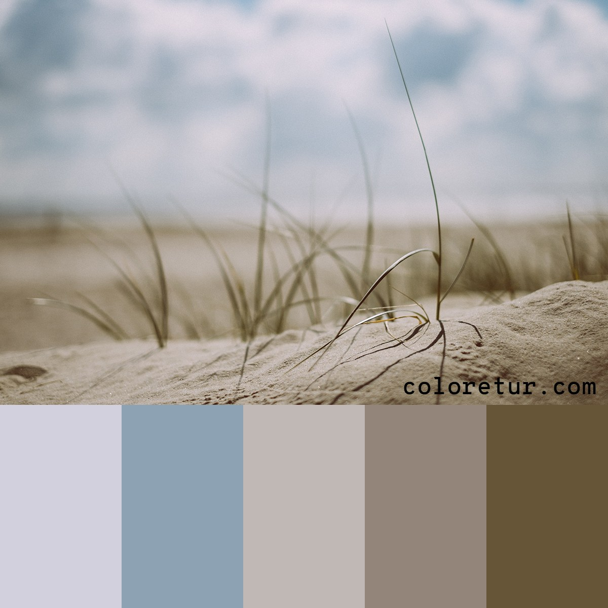 A coastal color palette