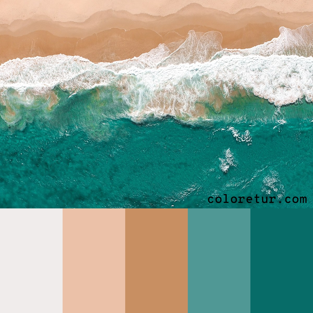 A color palette picked from the high tide