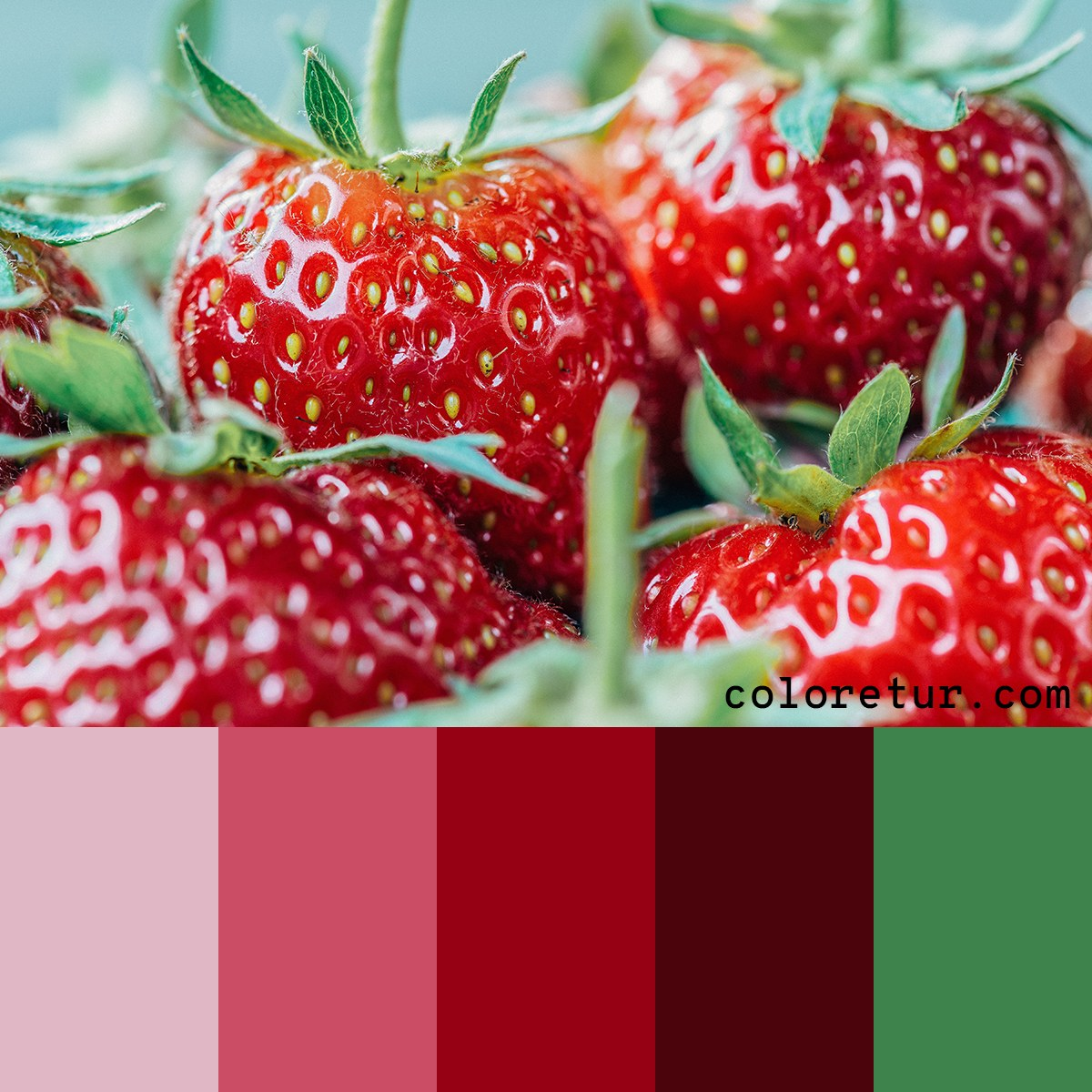 A refreshing palette resembling strawberries