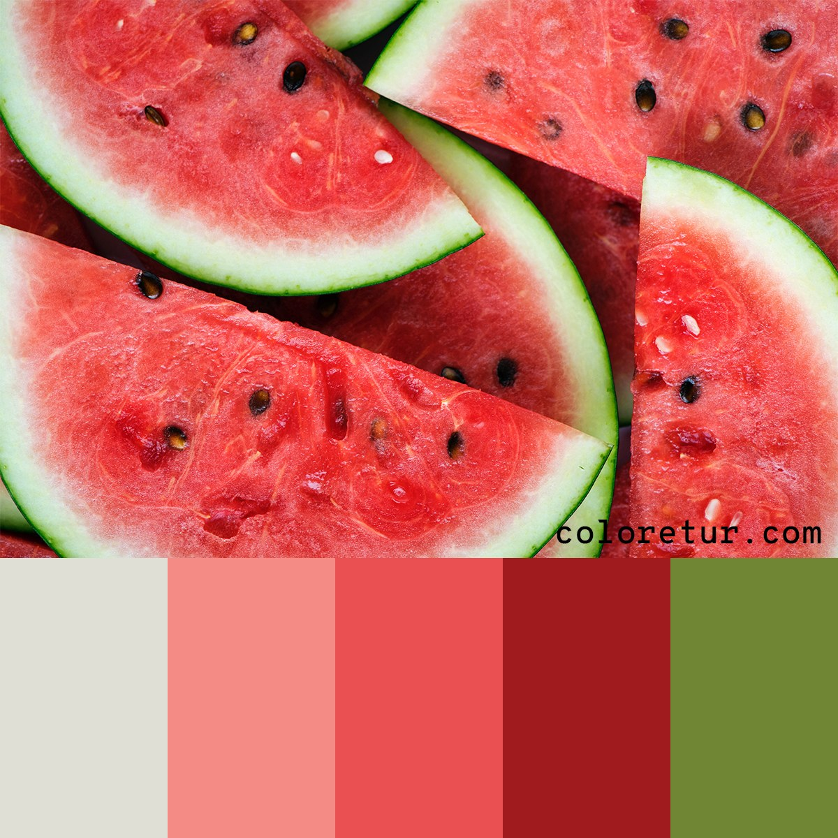 Color palette chosen from watermelon