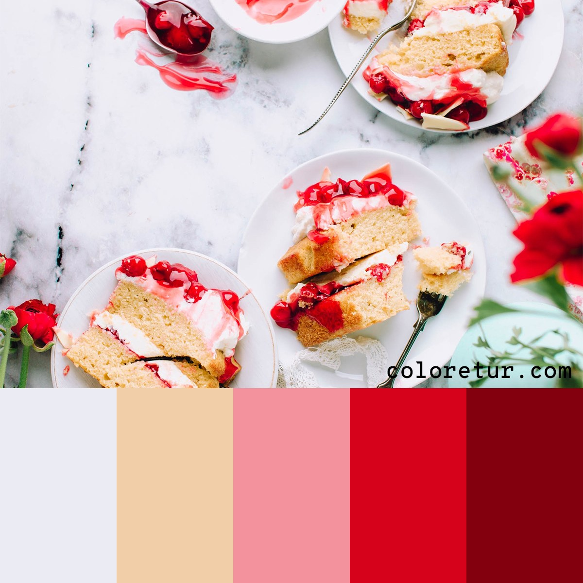 Vibrant colors selected from a cherry shortcake to make a fresh palette.