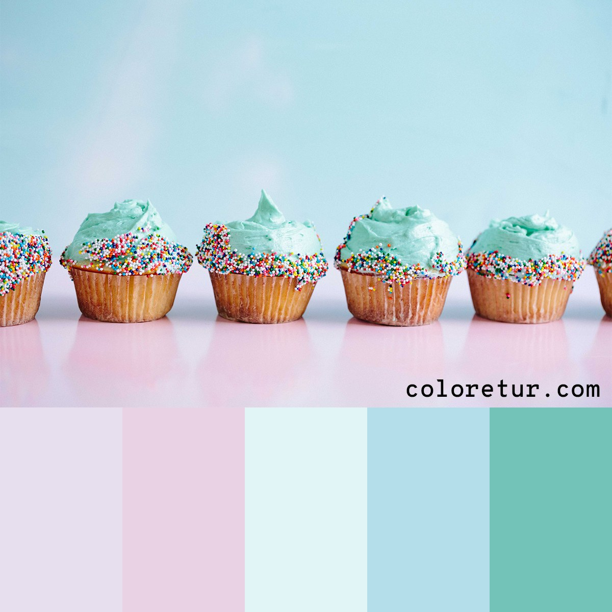 A soft pastel palette from cupcakes with turquoise frosting.
