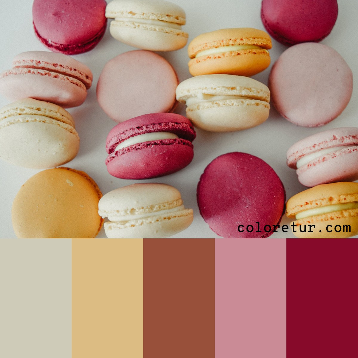 A warm palette composed from delicious, delicate macaroons.