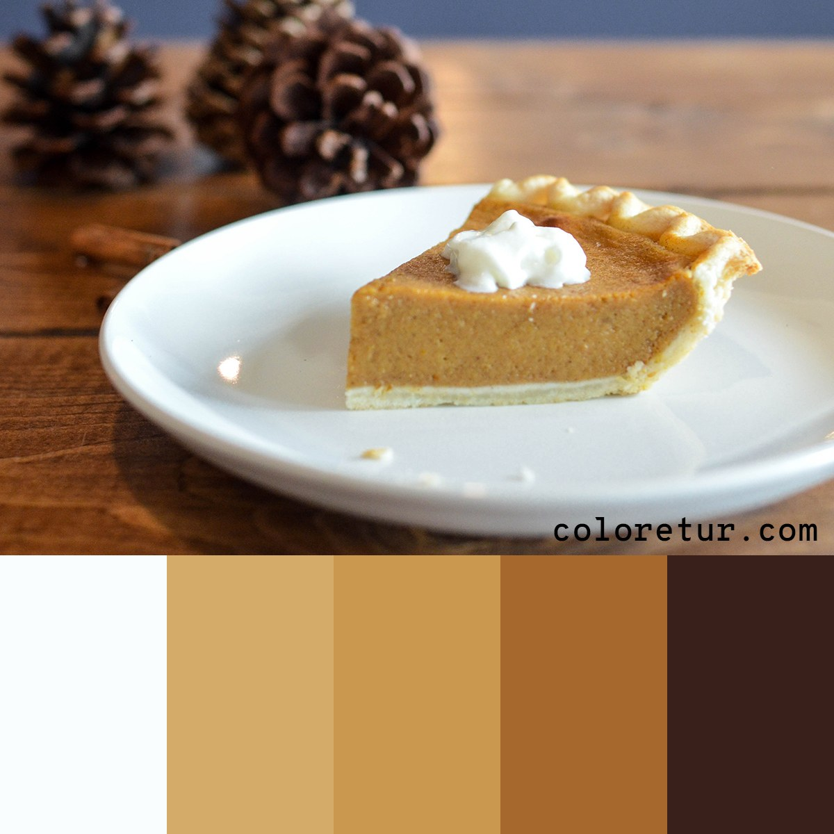 A warm, inviting palette using the warm spices in a traditional pumpkin pie.