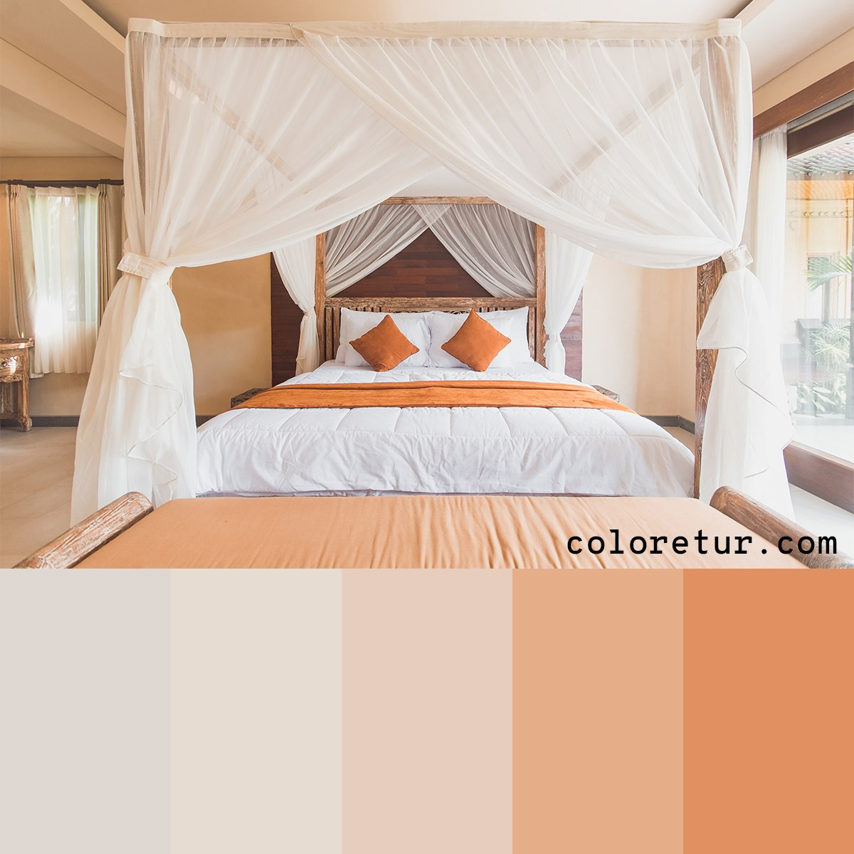 Warm, neutral tones create an inviting and comforting color palette