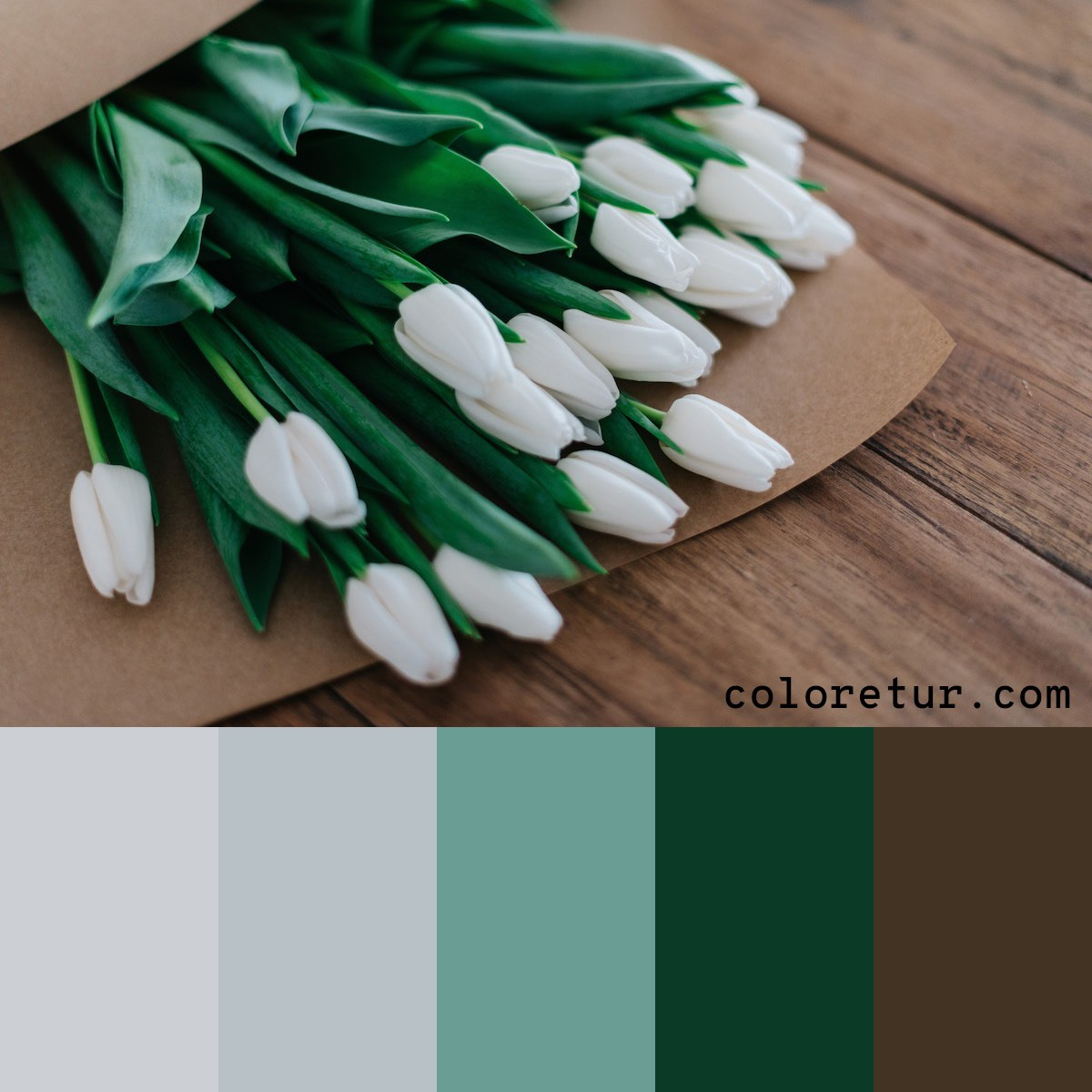 A muted palette with soft colors from a bouquet of tulips.
