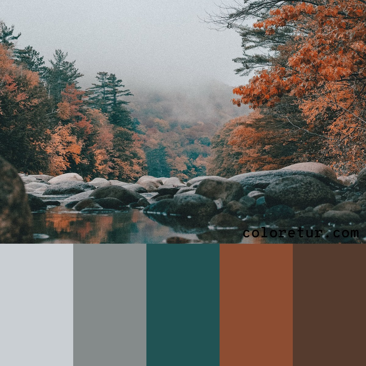 A muted palette from a secluded pond in the mountains.