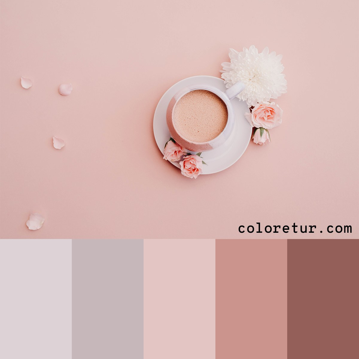 Pale pink palette from the milky morning coffee