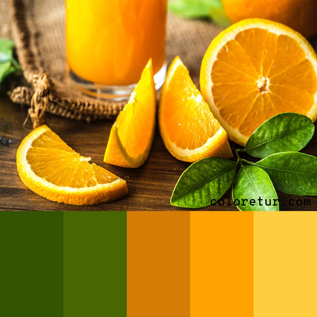 A bright, zesty palette with fresh oranges and greens